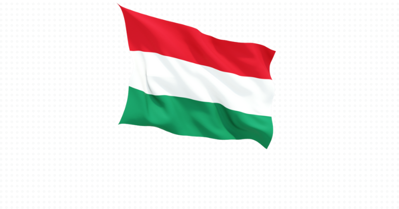 Macaristan Projesi Katılımcı Sonuçları